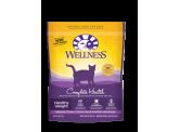Wellness 成貓體重控制配方 6lb